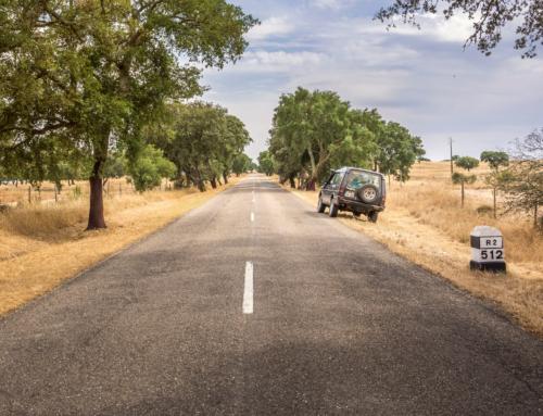 Estrada Nacional 2 – Acreditar em Portugal, agora é o momento!
